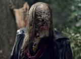 'Walking Dead' Filming Landed Actor Ryan Hurst in Hospital