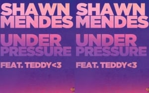 Shawn Mendes Excited to Work With Teddy Geiger for 'Under Pressure' Cover