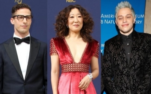 Andy Samberg and Sandra Oh Urge People to Give Pete Davidson Space and Privacy Amid Struggles