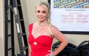 Britney Spears' Financial Records Unravel $2.5M Earning in 2018