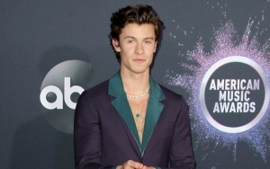 Shawn Mendes Apologizes for Calling off Concert Due to Laryngitis