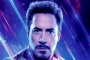 Robert Downey Jr. to Reappear as Iron Man on Disney's Streaming Service?