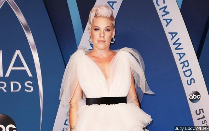 Pink Forced to Postpone Third Sydney Show Due to Stomach Virus