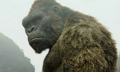 'King Kong' TV Series in the Works With Female Lead