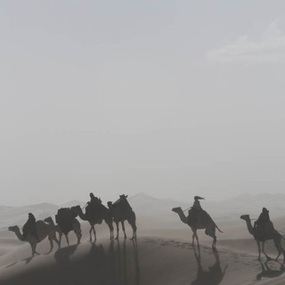 Queen of the Desert Picture 3