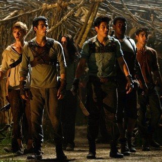 Will Poulter, Dylan O'Brien, Ki Hong Lee and Aml Ameen in 20th Century Fox's The Maze Runner (2014)