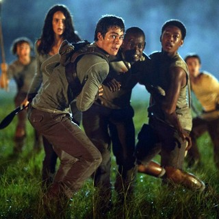 Kaya Scodelario, Dylan O'Brien and Aml Ameen in 20th Century Fox's The Maze Runner (2014)
