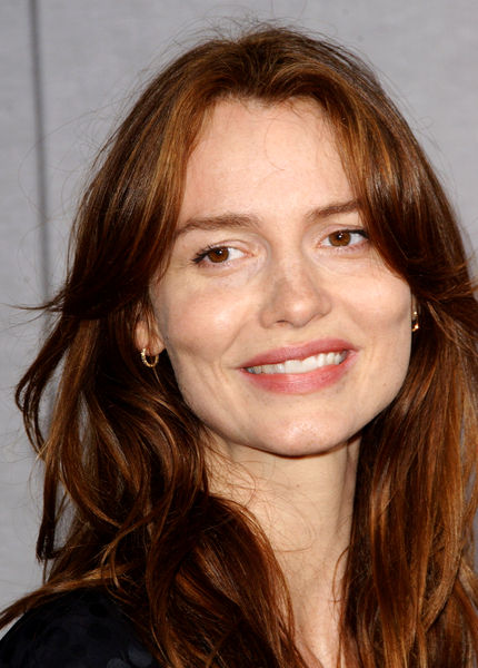saffron burrows troy