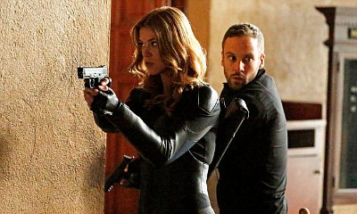 'Agents of S.H.I.E.L.D.' Spin-Off Will Star Adrianne Palicki and Nick Blood