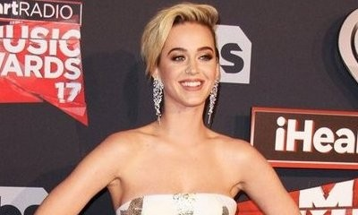 Katy Perry Courted to Be Judge on 'American Idol' Reboot