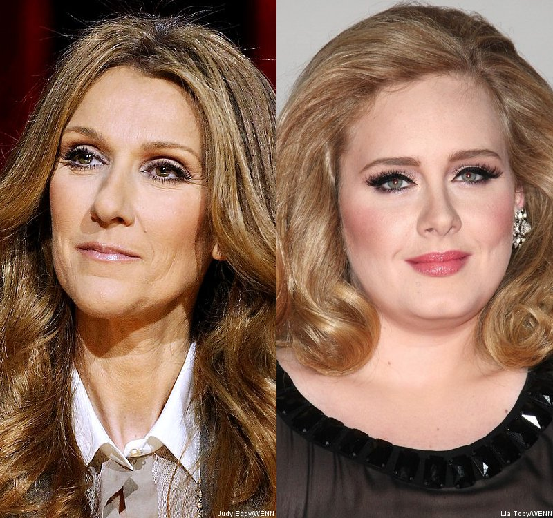 Celine Dion Covers Adele's 'Rolling in the Deep' at Las Vegas Concert