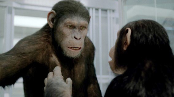 'Rise of the Planet of the Apes' Still Rules Box Office, Holding Off 'The Help'